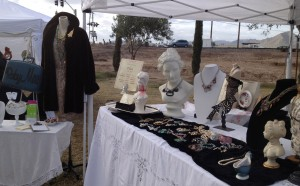 Art In the Olive Grove, Queen Creek Olive Mill, December 2013. There were tumbleweeds behind my booth. Very wild west feeling